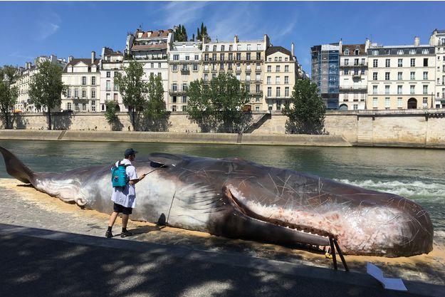 Une-baleine-echouee-en-plein-Paris