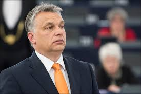 Hungarian Prime Minister Viktor Orbán debated the situatio… | Flickr